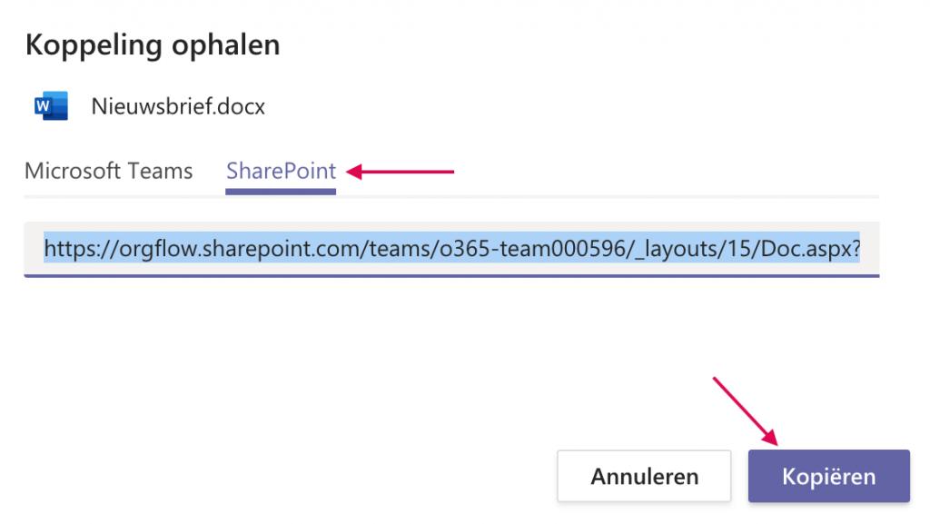 Koppeling ophalen naar het bestand opent op Sharepoint in je browser.