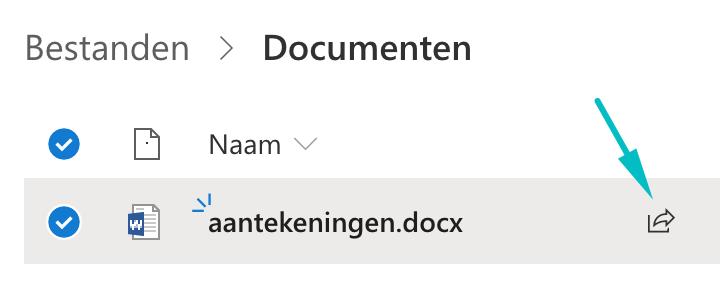 Bestand in OneDrive met een pijl naar het Share-knopje.
