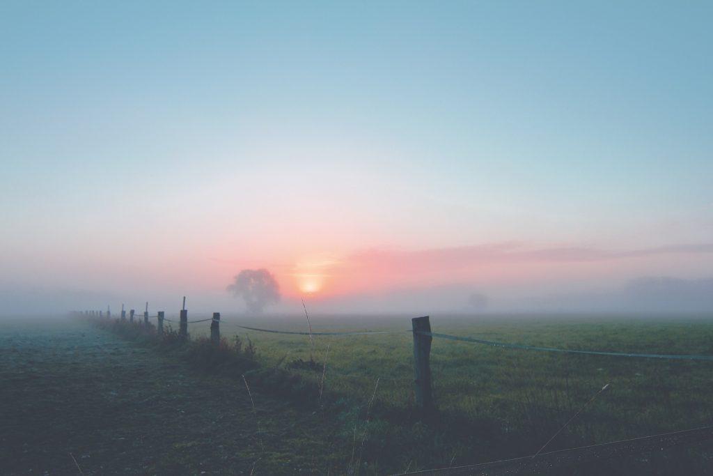 Mist boven een weiland en een opkomende zon